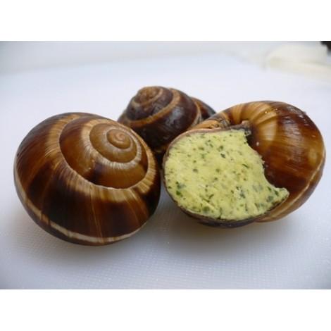 La douzaine d'escargots
