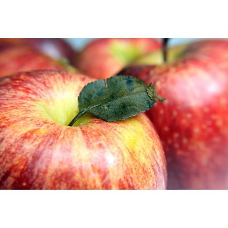Pomme gala vendue par 1 kg