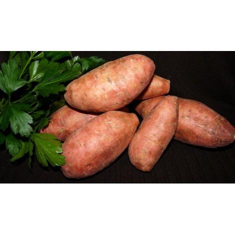 Patate Douce vendue au kg